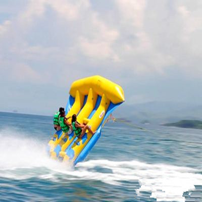 Inflatable flying fish towable